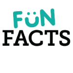 Fun Facts- Did You Know?