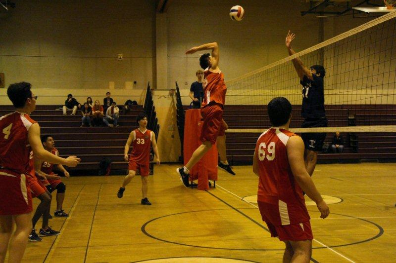 FDR BOYS VOLLEYBALL
