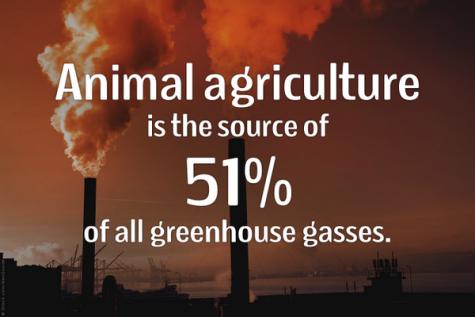 A Big Misconception About Climate Change