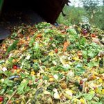 Environmentalist! You Waste Food!