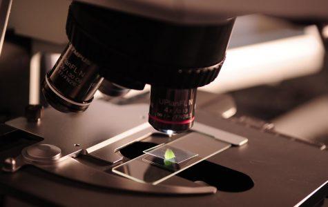The Cruelty Underneath Scientific Progress