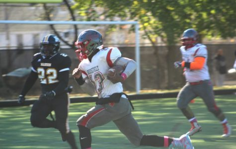FDR Cougars Football
