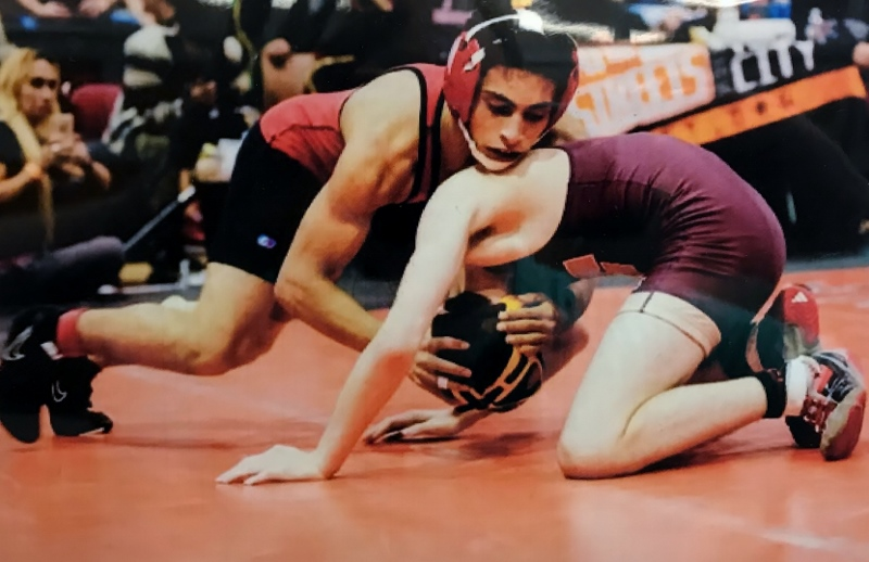 Cougar Wrestling, Going For The Pin!