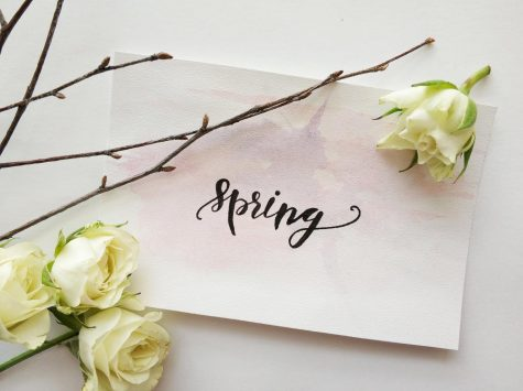 8 Facts About Spring