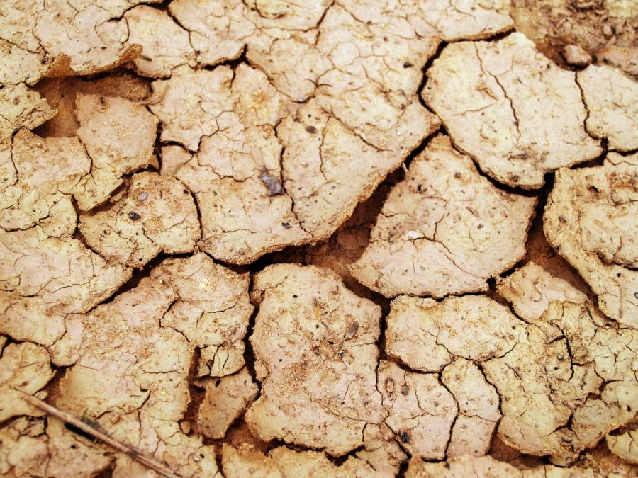 Climate+Crisis